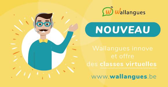 Des classes virtuelles : une nouveauté du projet Wallangues