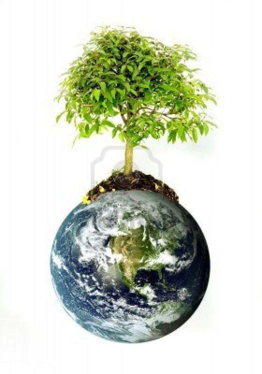 2673846-proteger-l-39-environnement-concept--terre-avec-un-arbre-isole-sur-un-fond-blanc.jpg