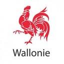 Coronavirus 16/03 : Circulaire ministérielle sur les services de collecte et de gestion des déchets en Wallonie